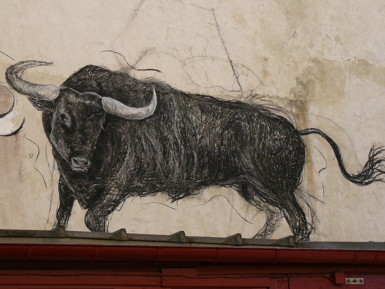 """""""Performance sur un mur de Bayonne"""" Charbon de bois sur mur"""