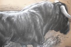 """""""Toro bravo"""" Fusain et craie 100x70 cm"""